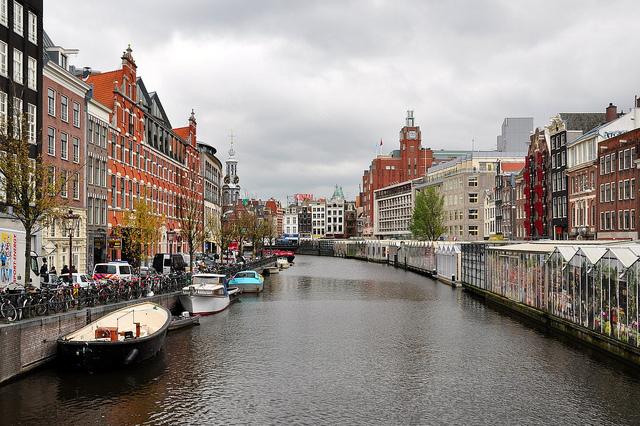 Piata de flori din Amsterdam