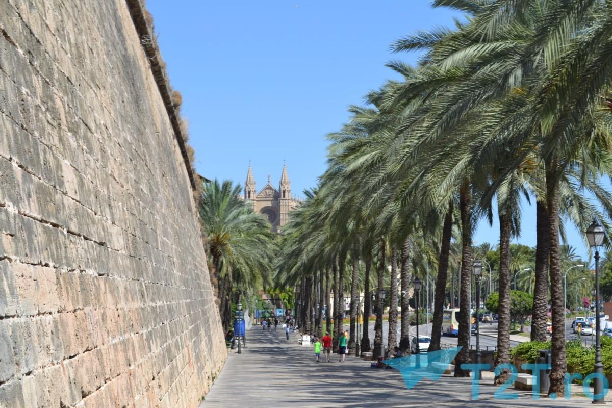 Aer mediteranean cu catedrala in departare
