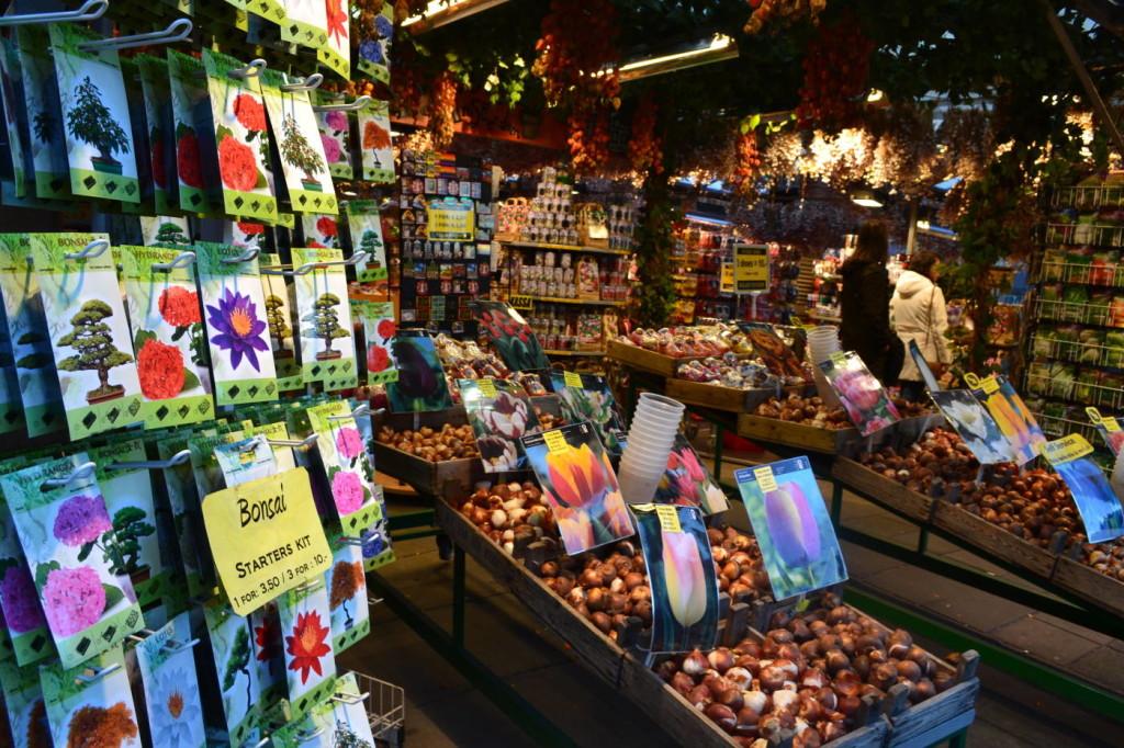 Taraba in piata de flori din Amsterdam