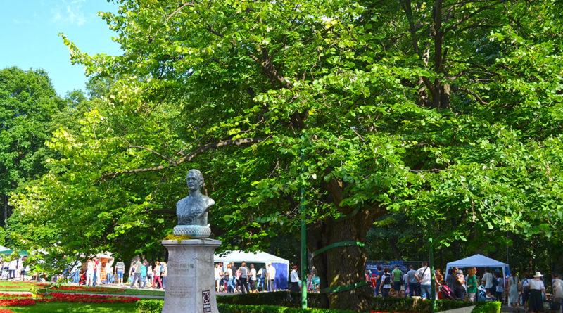 Teiul lui Eminescu și bustul său din Parcul Copou